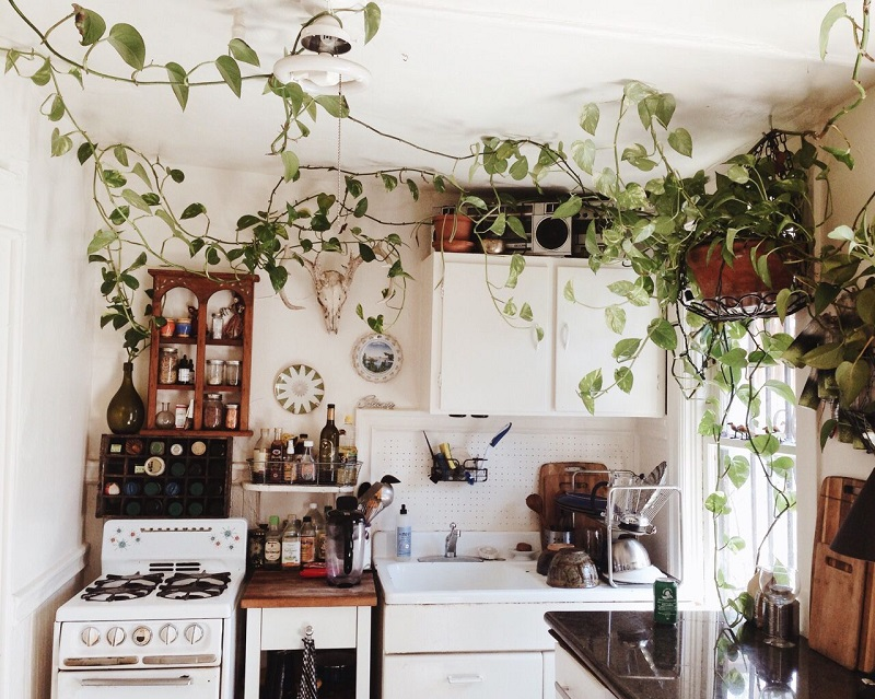 Change A Run-of-the-plant Look With Kitchen Pendant